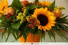 Bloemen houden van mensen - en ik van bloemen!