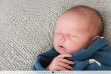 Newbornshoot Jack
