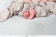 Newbornshoot Q.