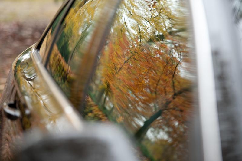 Trouwauto met herstkleuren