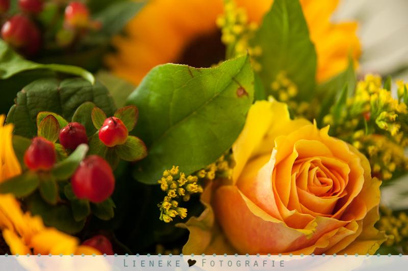 's Zomerse bos bloemen