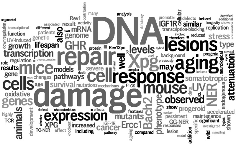 Proefschrift DNA Damage and Aging