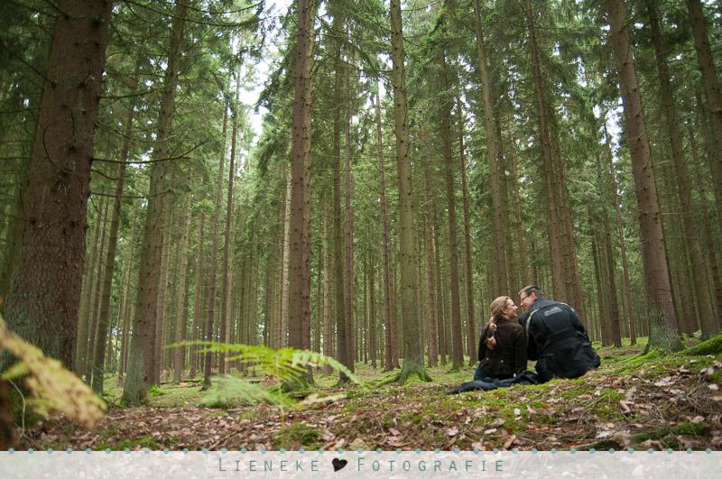 Heerlijk lunchplekje in het bos