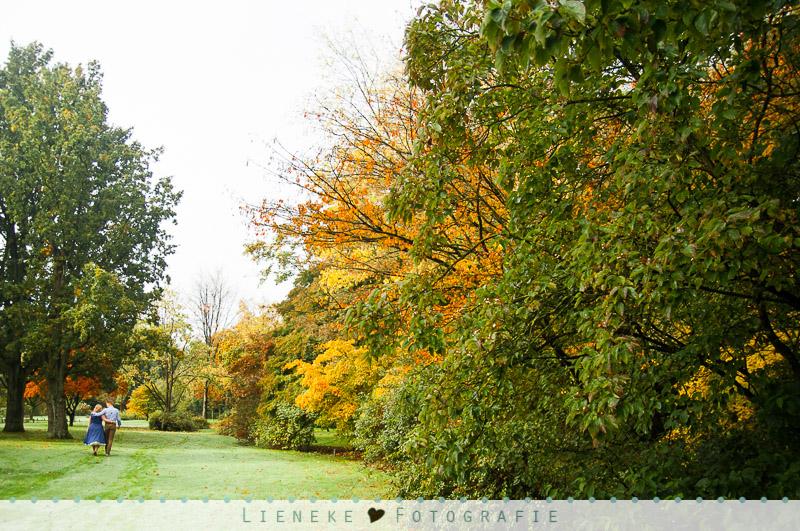 Loveshoot herfst