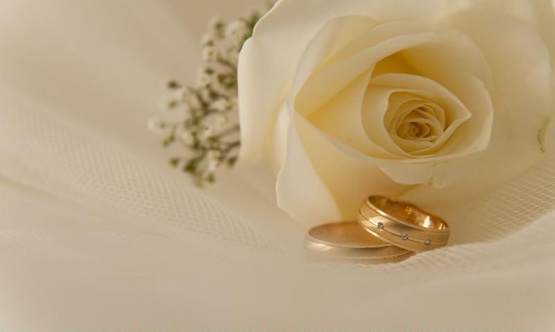 Lieneke Fotografie trouwringen