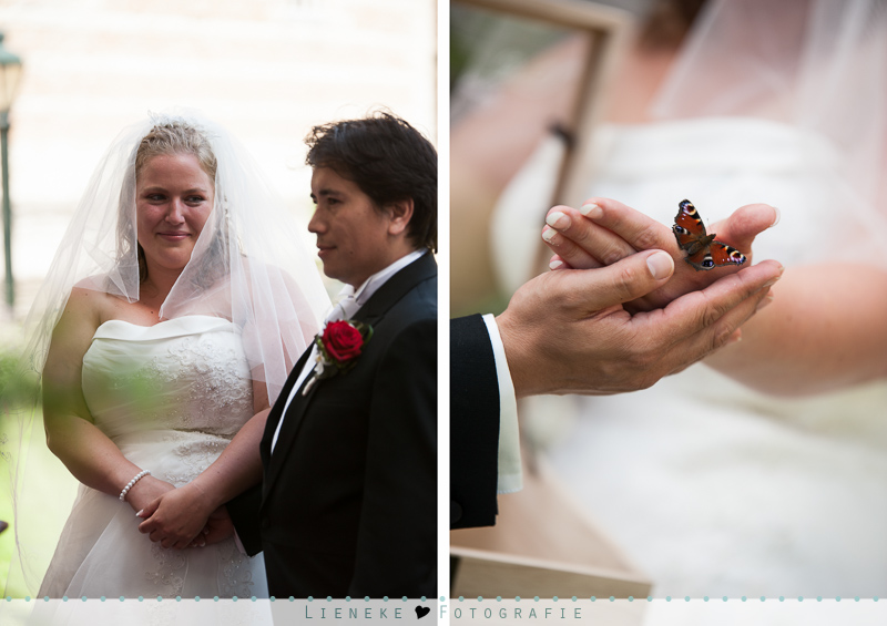 Vlinders bruiloft