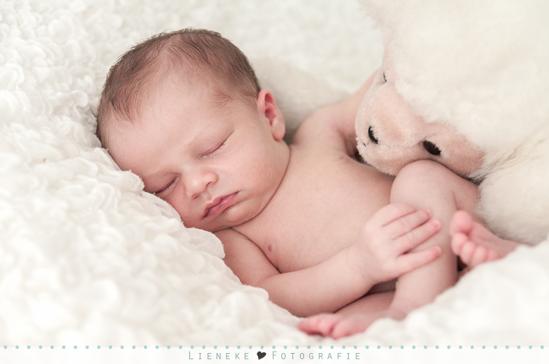 Newbornshoot Julian