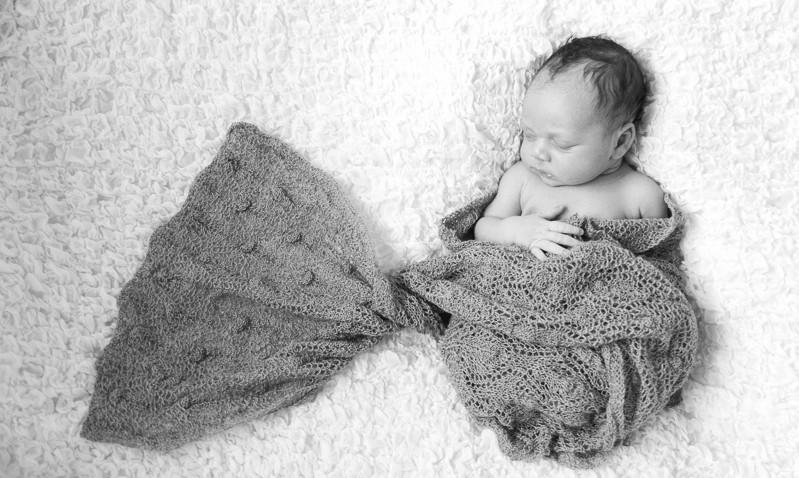 newbornshoot dordrecht