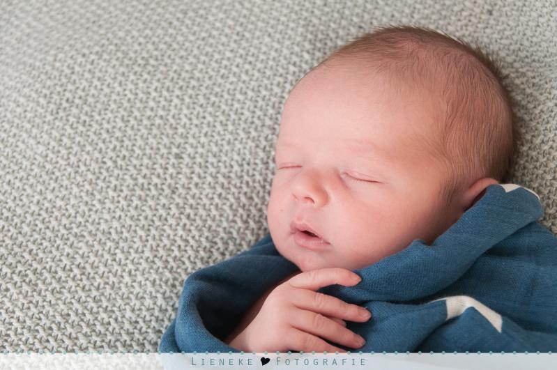 newborn fotoshoot regio rotterdam