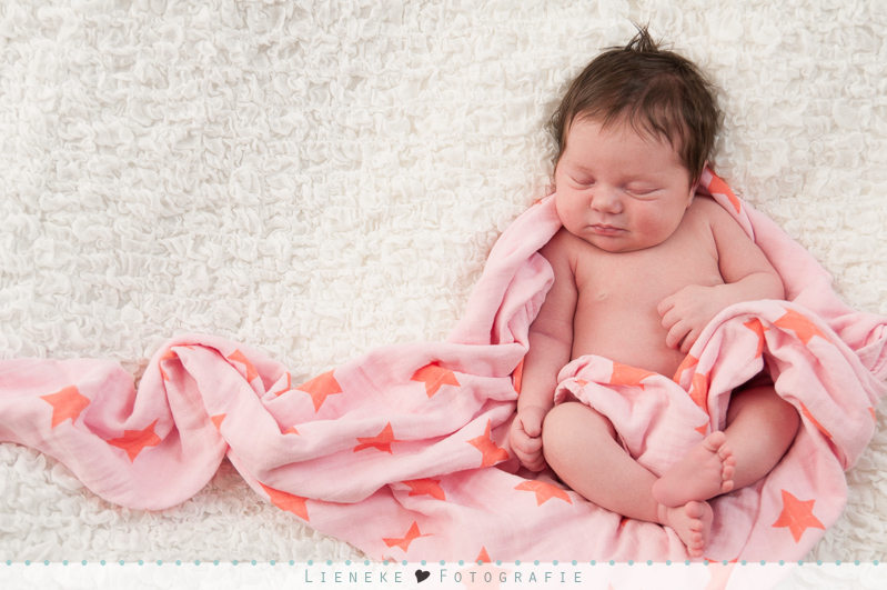 newborn fotoshoot brabant