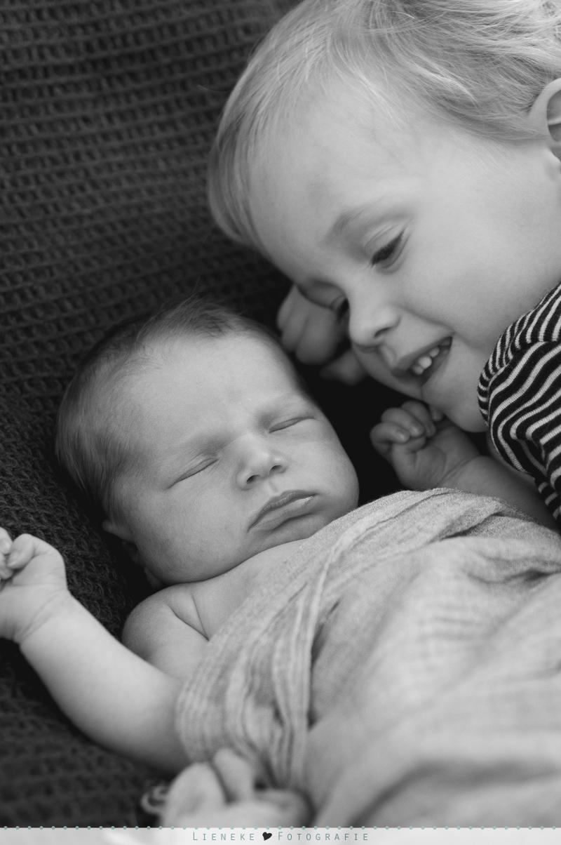 newbornshoot grote broer