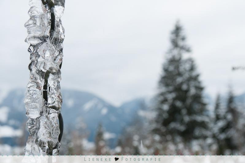 Lieneke fotografie sneeuw