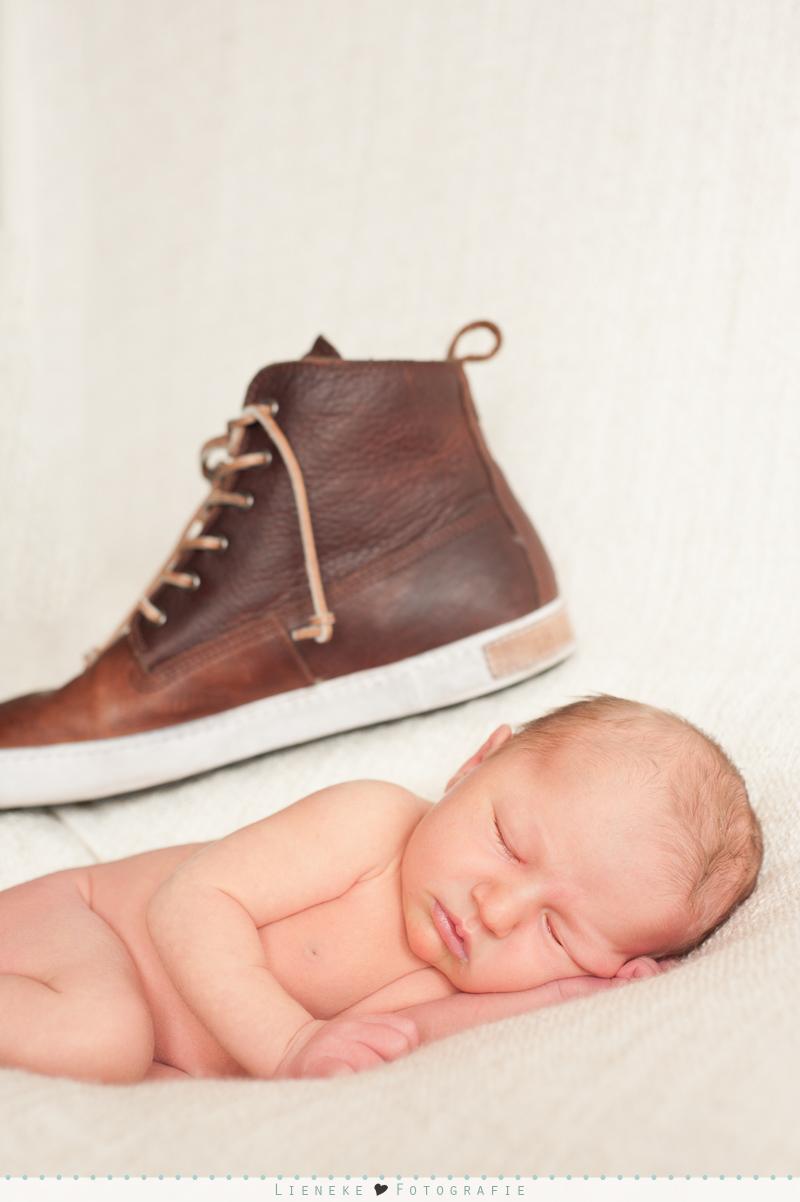 newborn fotoshoot Bleiswijk